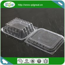 Biodegradable Clear Plastic Punnet Packaging Fruits