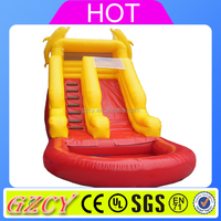 Dolphin slide type inflatable water slide,water pool slides for sale
