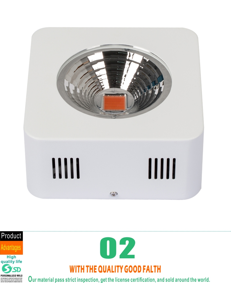 200w 200 watt cob led grow light full spectrum buy cob. Black Bedroom Furniture Sets. Home Design Ideas