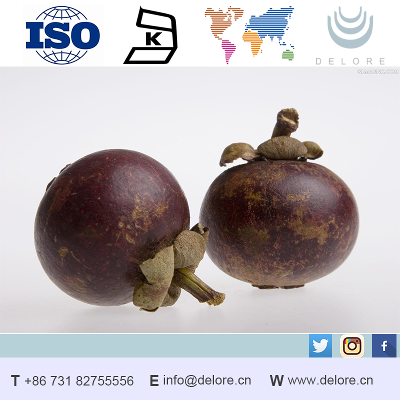 Lot stock free sample natural organic extraction of mangosteen juice