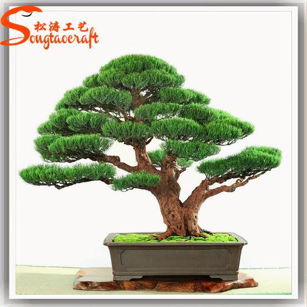 Areca Palm Tree for Sale  FastGrowingTreescom