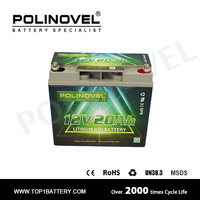 lifepo4 12v 20ah cells headway battery pack