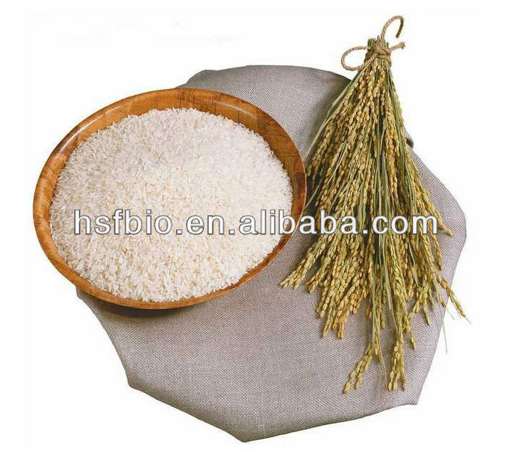 Rice Bran Extract Powder 98% Oryzanol