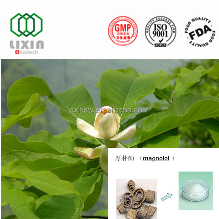 GMP Factory Supply Magnolol Rich in Officinal Magnolia Bark Extract , Magnolol Extract 98% Magnolol
