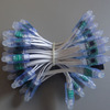 12mm WS2811 RGB 50pcs String IP68