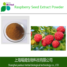 Top Grade and Healthy Raspberry Seed Extract Powder