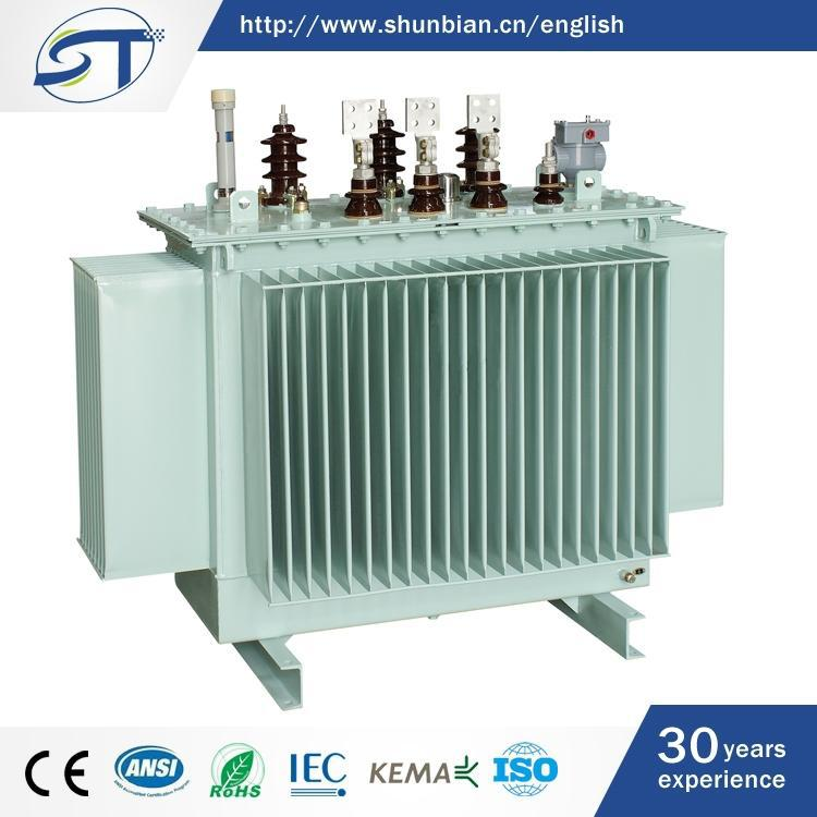 Electrical Equipment 3-Phase Zhejiang Wenzhou Oil Immersed 220V 12V Power Transformer