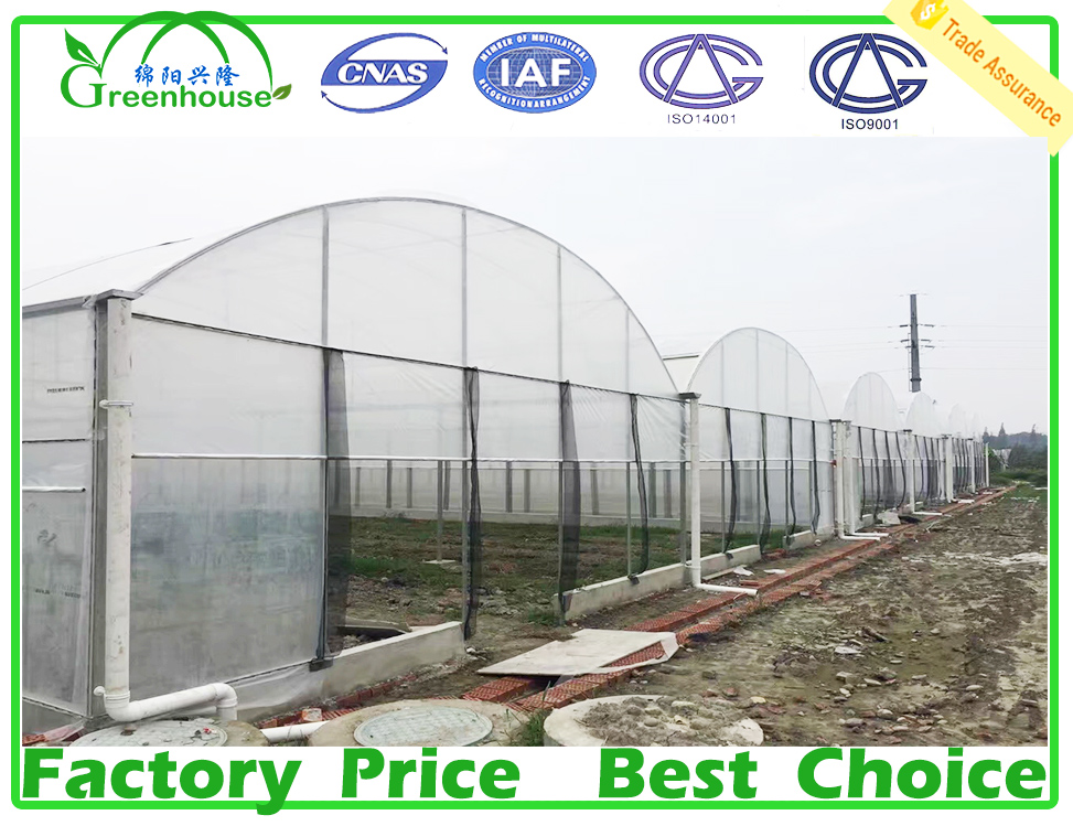 high quality UV protection plastic greenhouse covering film