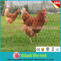 0.63mm Chicken wire fencing/Rabbit cage mesh rolls
