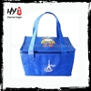 Brand new fitness lunch cooler bag with low price