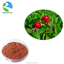 Wholesale high quality pure natural rose hip fruit extract