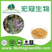 High-quality pharmaceutical polygala tenuifolia from manufacturer