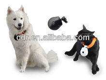 hot sale pet product with mini digital camera