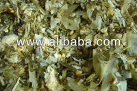 Best Quality Animal Fodder maize, Corn Silage