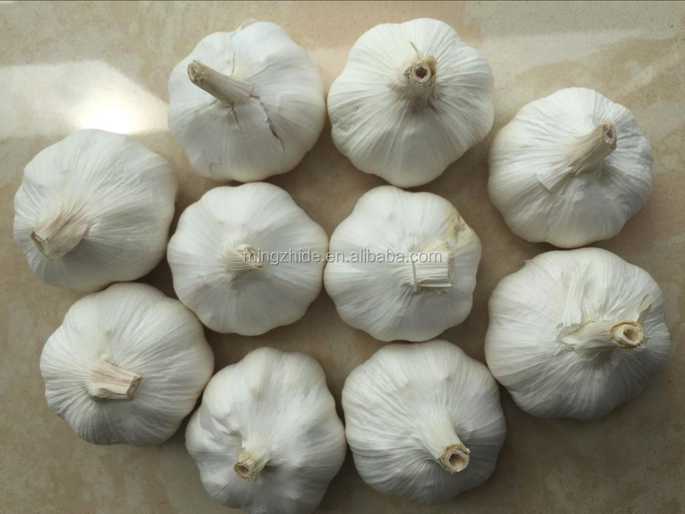 2017 new Crop Fresh Garlic, Pure White 4.5cm 5cm 5.5cm
