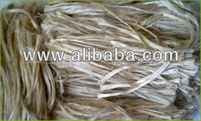 Raw Jute In bales/ bags/bag/sack