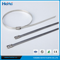 Haitai Alibaba Epoxy Coated 304 Ball Lock Stainless Steel Cable Tie Wholesale