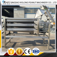 Peanut Gain Processing Equipment Machine