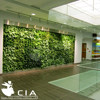 /product-detail/synthetic-grass-artificial-green-wall-module-60257668370.html