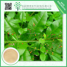 Wholesale products panax ginseng extract powder 45%