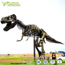 Dinosaur Fossil for Playground