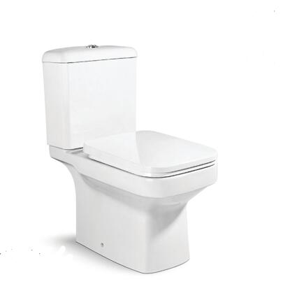 Ceeport cheap two piece toilet for sale washdown toilet bowl