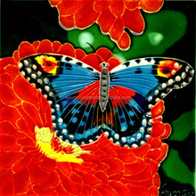 Glazed hand painted butterfly ceramic tile 20x20