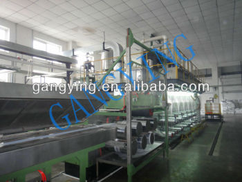 Recycle PET Fiber Production Line (FSP Line)