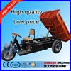 new electric trike motorcycle/energy saving electric trike motorcycle/affordable electric trike motorcycle