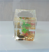 Decorative custom hot new acrylic wholesale fish tanks