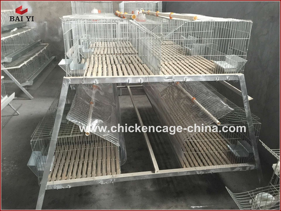 Galvanized metal rabbit cage poultry layer cages