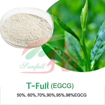 pure Epigallocatechin Gallate (EGCG) 95% 98%