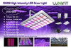 No fans no noise Large cover area 1000w full spectrum led grow lights for vertical farm for lettuce growing