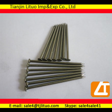 Q195 wire rod material polished electric galvanized common nails