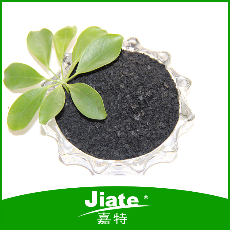 Environmental seaweed extract fertilizer farm for vegetable