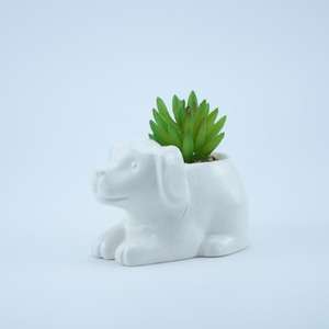 Wholesale Artificial mini succulent potted plant in ceramic flower pot plant with cute animal shaped