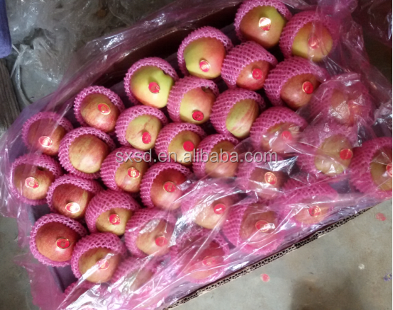 Hot sale average price fresh sweet fuji apple fruit in good quality