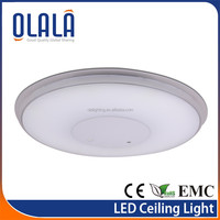 intelligent smart light with Remote Control ceiling pendant lamps