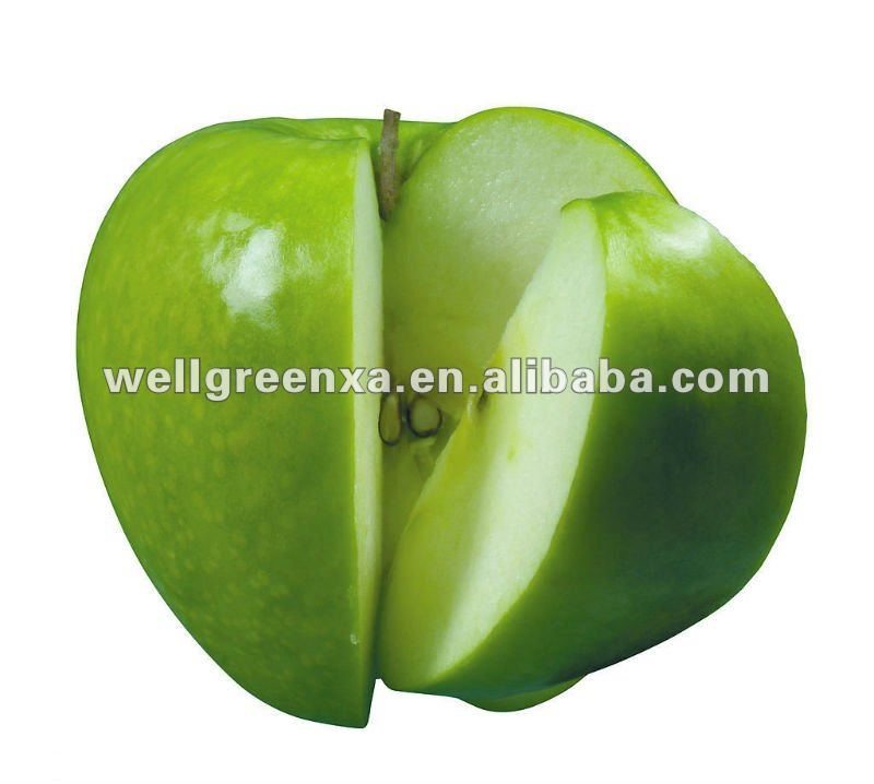 top quality Unripe Green Apple Extract
