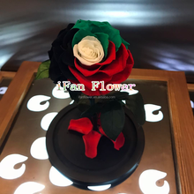 High quality preserved roses in glass with curving stem inside natural flowers export to UAE