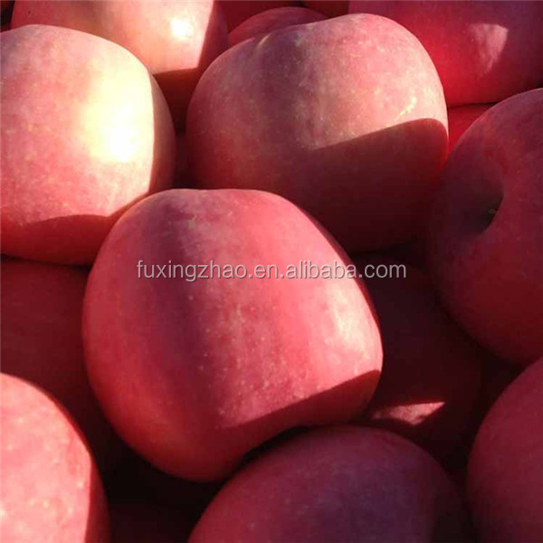 2017 new fresh fruits red Fuji apples