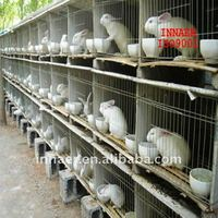 specialized production pet cage for rabbit