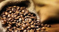 Ethiopia Coffee beans/cocoa beans and kidney beansready for export