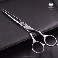 2015 New Creation Hitachi Stainless Hair Cutting Scissors