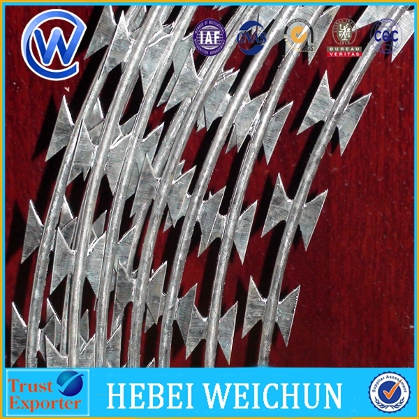 BTO 22 Hot Dipped Galvanized home depot concertina razor wire