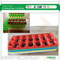 12 eggs vegetable shaped plastic containers