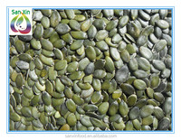 Wholesale all kinds pumpkin seeds