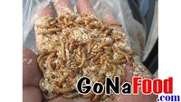 Superworm deep - frozen mealworm