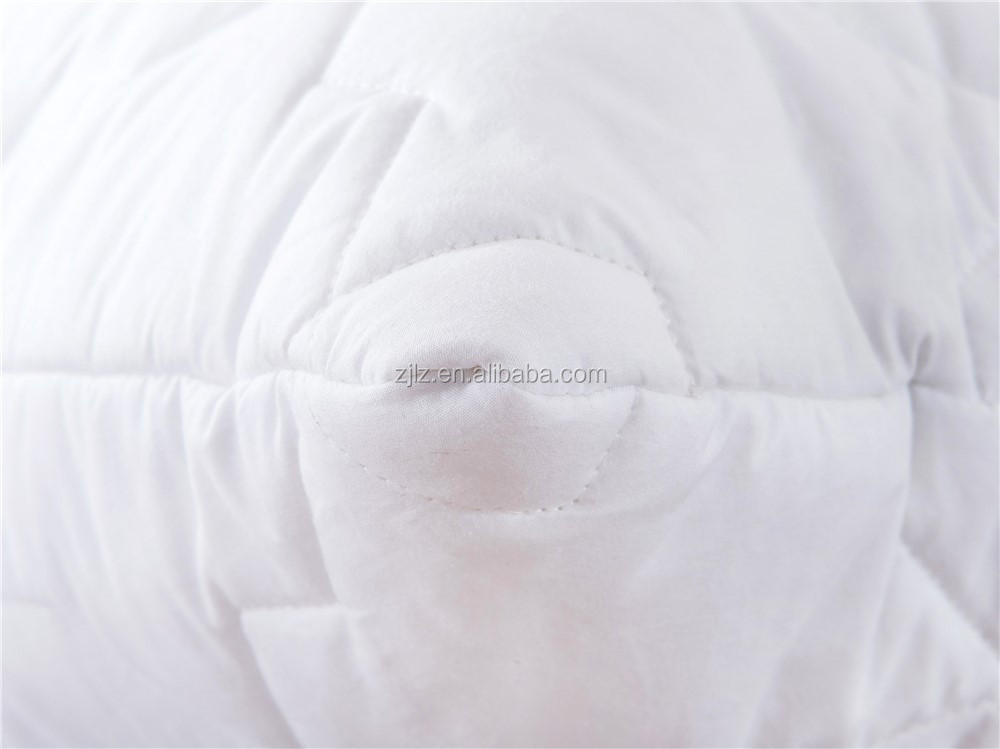 Factory Supplier Pure Silk Filling Pillow &Cotton Cover Luxury Silk Pillow