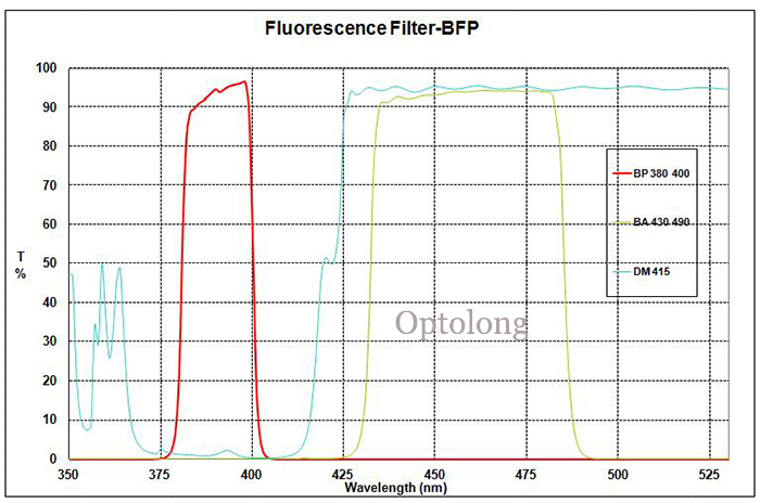 In Stock!! BFP Fluorescence Microscope Filter Sets for fluorescent microscope